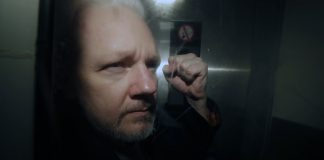 Suecia no pedira detencion de Julian Assange